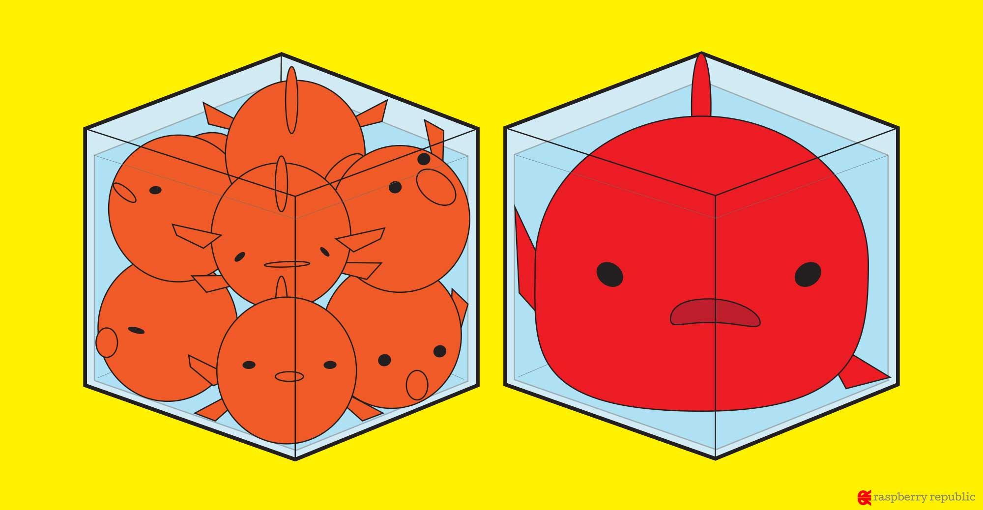 水槽に金魚は何匹まで飼えるのか